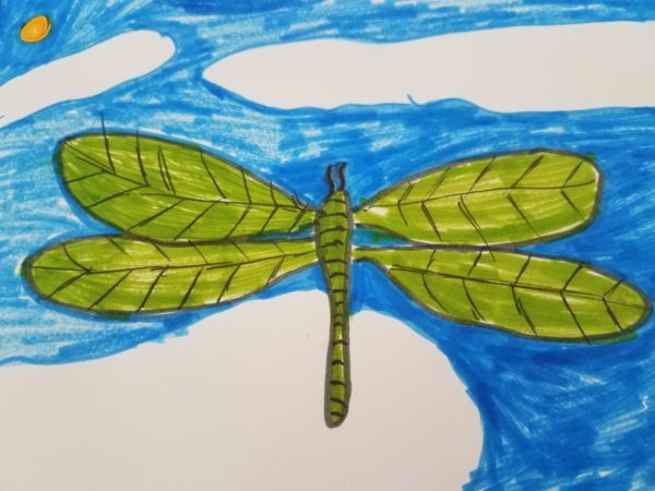 Dragonfly in the Sky